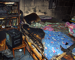 Structural Fire Cause & Origin. Forensic investigators with Anderson Engineering determined that a space heater started this fire.